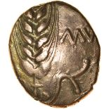 Cunobelinus (Agr?) No Branch Type. c.AD8-41. Cat & Trin. Celtic gold stater. 15-17mm. 5.32g.