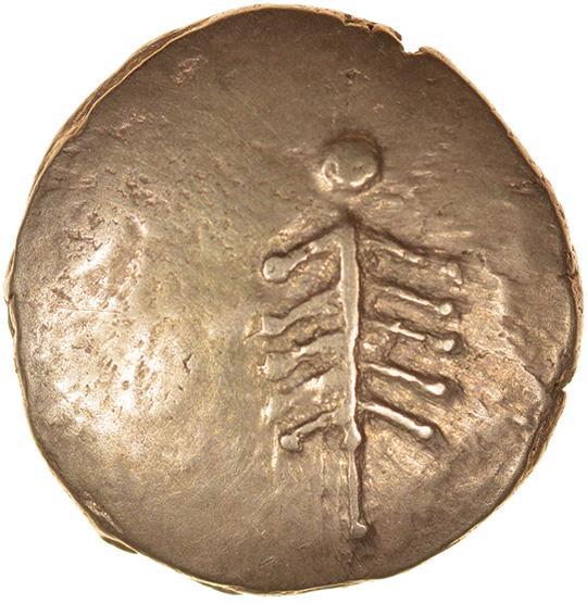 Corio Tree. Tiny V Type. c.20BC-5AD. Dobunni. Celtic gold stater. 17mm. 5.38g.