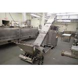 Cozzini SS incline screw conveyor