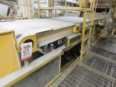 "APPROX. 11' X 46"" OF BELT TRANSFER CONVEYOR [RIGGING FEE FOR LOT #43 - $500 USD PLUS APPLICABLE"