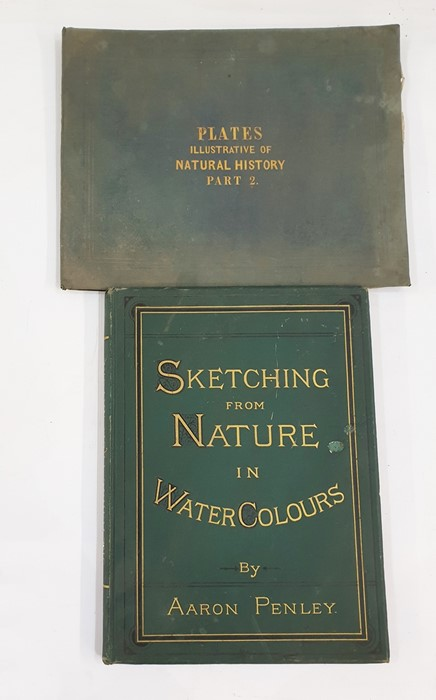 """Lot 50 - [Whymper] """"Thirty Plates of Illustrated Natural History with a Short Description Annexed to Each"""