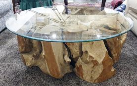 Coffee table, the glass top supported by root system which has grown around the rock, 110cm diameter