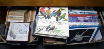 Two boxes of booksto include Beatrix Potter titles, etc
