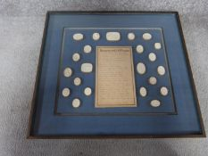 A framed collection of Grand Tour plaster Intaglio seals with list of descriptions in Italian and