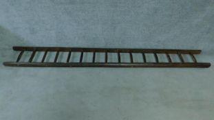 An antique oak ladder. H.325cm
