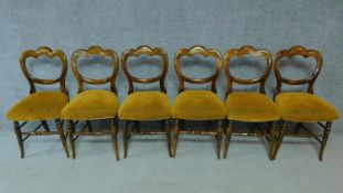 A set of six Victorian stained beech dining chairs on swept turned supports. H.85cm