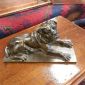 A LARGE CAST BRONZE FIGURE OF A RECLINING BULL MASTIFF DOG WITH GLASS EYES, SIGNED D'ORSAY TO BACK