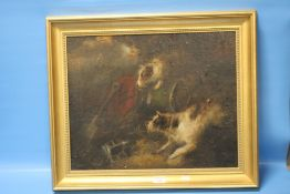 AN FRAMED OIL ON CANVAS OF A JACK RUSSELL, SIGNATURE INDISTINCT