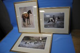 THREE FRAMED AND GLAZED LIMITED EDITION PRINTS DEPICTING HORSES BY ALISON WILSON