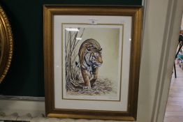 A FRAMED LIMITED EDITION PRINT OF A TIGER SIGNED STEPHEN GAYFORD, APPROX. 41 X 50 CM