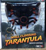 15 X WALL CLIMBING TARANTULAS / COMBINED RRP £300.00 / UNTESTED CUSTOMER RETURNS
