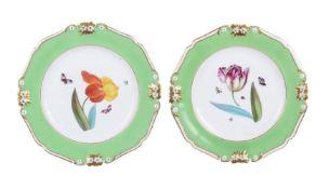 A pair of Derby (Robert Bloor) green ground botanical plates