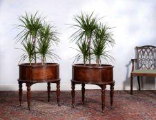 ϒ A pair of rosewood oval jardinieres or planters, mid 19th century