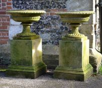 A pair of English carved limestone urns on plinths