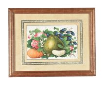 A set of twelve good Chinese gouache 'fruit and flower' paintings, , circa 1850
