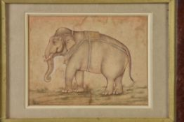 A Mughal style drawing of an Elephant