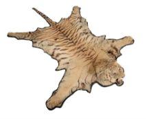 A tiger skin rug