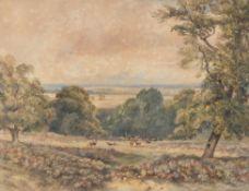 Attributed to David Cox Junior (British 1808-1885) , Wynnstay Park
