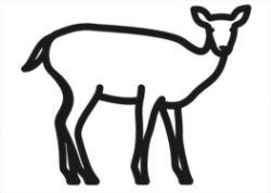 Julian Opie, Deer 3, 2020