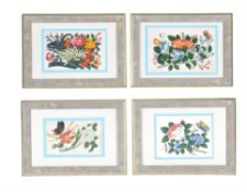 A set of twelve Chinese floral paintings on pith paper