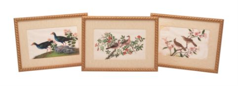 A set of twelve Chinese gouache paintings, circa 1850
