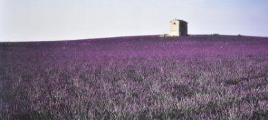 λ Marcus Lyon (British b.1965), Maison de Vignes, Provence 1996