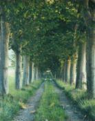 λ Marcus Lyon (British b.1965), The Tree Avenue, Provence 1996