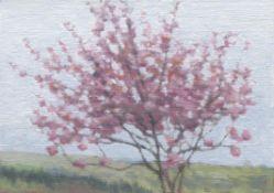 Kate Sherman, Blossom Tree, 2020