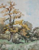 Henri Joseph Harpignies (French 1819-1916), A tree study