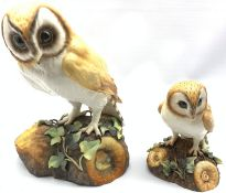 Large Royal Crown Derby model of a Barn Owl by K Wood H25cm and another by L Payne H15cm