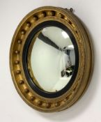 19th century circular gilt framed wall mirror, with convex plate enclosed by reeded ebonised slip, f