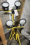 Two halogen extendable site lights