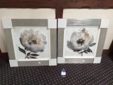 2x Framed prints