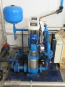 Twin Lowara Pump Water System