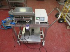 2 x Stainless Steel Weighing Platforms, Stevens DRP3000i Digital Read Out etc