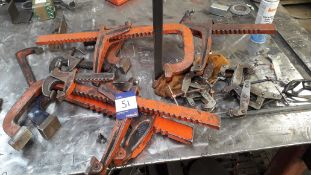 Quantity of Various Carver Clamps