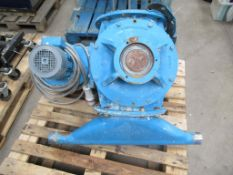 Cast Iron Body Stainless Steel Rotor