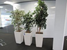 3 Various Artificial Plants