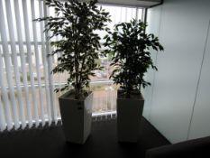2 Various Artificial Plants