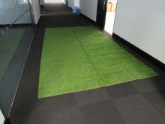 Artificial Grass Approx. 3m x 2.5m