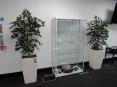 2 Artificial Figus Plants