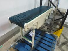 1 x MS Auto driven conveyor 1330 x 350. 1 x MS Auto driven conveyor with perspex cover 3000 x 350. 1