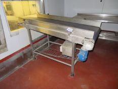 SS Driven conveyor with food grade belt