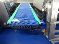Conveyopr Lines Box conveyor. SS with plastric grid belt and buide rails