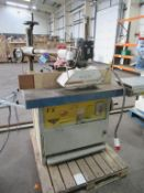 Wilson FX Spindle Moulder with Maggi Steff 2034 Power Feed