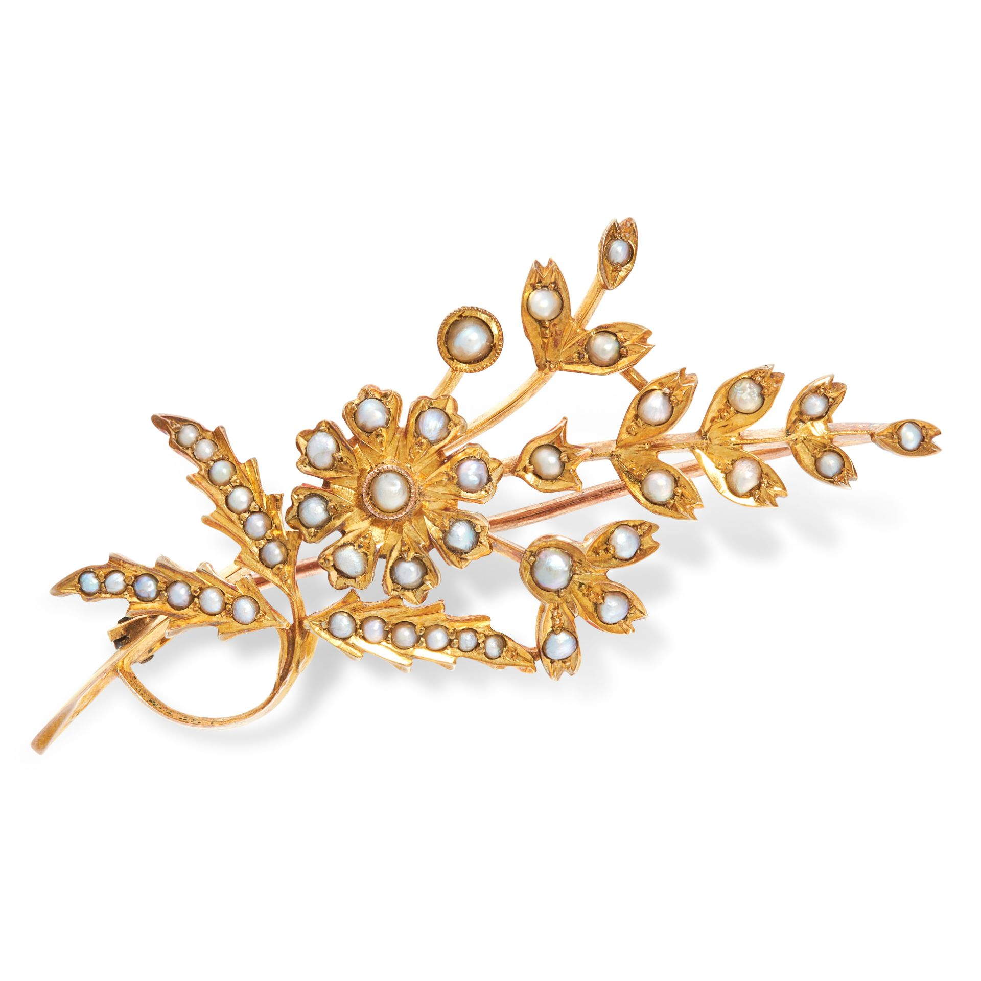 AN ANTIQUE PEARL FLOWER SPRAY BROOCH in yellow gold, in the form of a bouquet of flowers set with