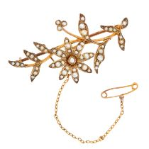 AN ANTIQUE PEARL BROOCH, LATE 19TH CENTURY in yellow gold, designed as a spray of foliage set with