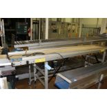 "Plasti-quip 17"" x 10' Belt Conveyor"