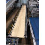 """HFA 17.5"""" x 13' Belt Conveyor"""