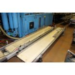"(Lot of 2) HFA 17"" x 12' Belt Conveyor"